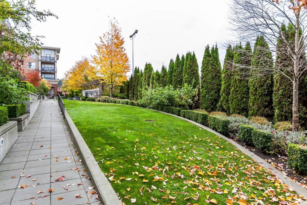 224 2970 King George Boulevard Surrey Bc Todd Conner